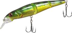 TAIPAN Water jointed F 9,5cm Bass
